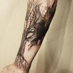 arbre cover corback