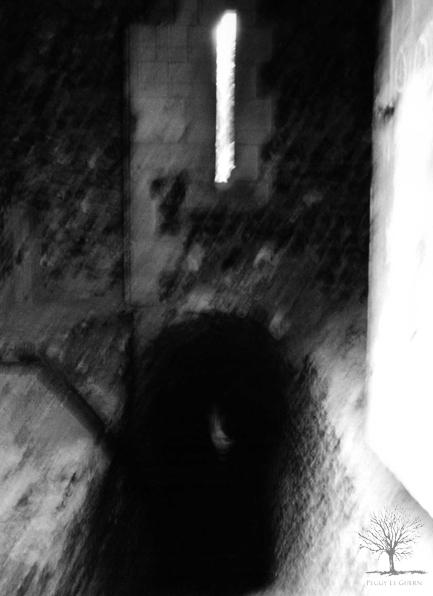 L'ombre errante